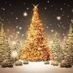 今すぐマネしたいクリスマスツリーの理想の飾り付け!【画像集】
