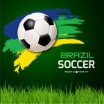 サッカーワールドカップ記録集