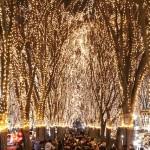 2014仙台のイルミネーション!光のページェント最新情報!