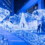 2014-2015カレッタ汐留のクリスマスイルミネーションの時間は?