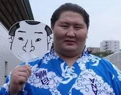 逸ノ城 経歴